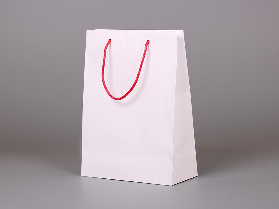 Бумажный крафт пакет с логотипом ростов
